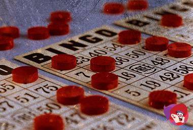 Bingo_Takes_the_Lead_01